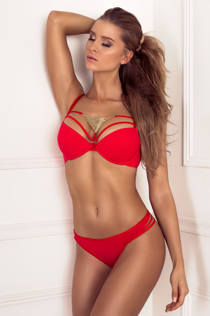 Golden Triangle Red Bra